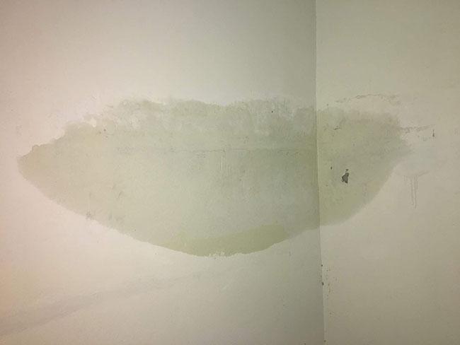 tường ẩm căn hộVí dụ thực tế đau đớn của nghiệm thu